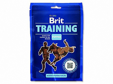 Brit Training Puppies